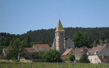 Côte de Nuits: 3-Hour Wine and Cheese Tour and Tasting