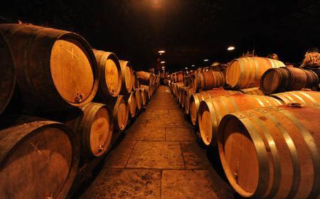 Burgundy Wines Full-Day Tasting Tour from Dijon