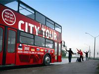 Tallinn Hop-On Hop-Off City Tour - 3 Loops