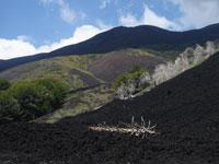Etna Volcano Private Tour