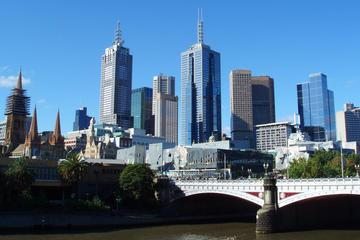Half-Day or Full-Day Private Guide Hire from Melbourne