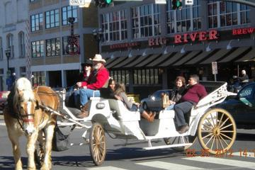 Private 20 Minute Downtown Nashville Horse and Carriage Tour