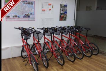 4-Hour Bike Tour of Singapore