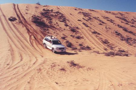 Desert Safari to Wahiba Sands and Wadi Bani Khalid from Muscat