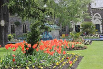 Private Tour: Walking Tour of Christchurch