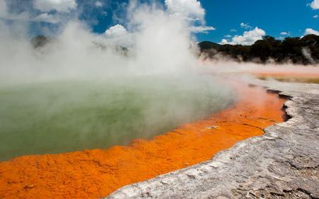 Auckland – Rotorua One-Way Transfer including Glow Worms Caves Visit