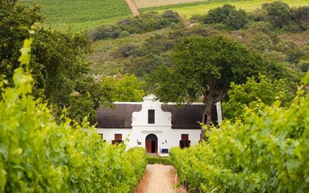 Cape Town Winelands Tour: Paarl, Franschhoek and Stellenbosch