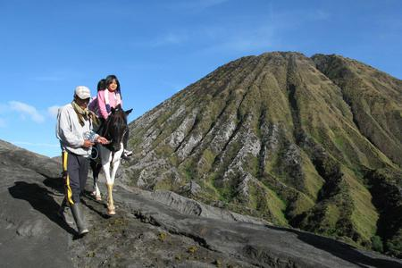 Road Trip To Bromo & Ijen in 4 Days