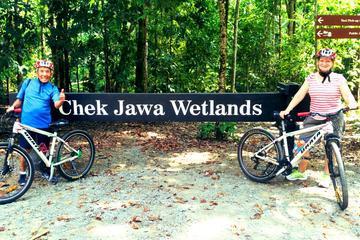 Half-Day Pulau Ubin Bike Tour from Singapore