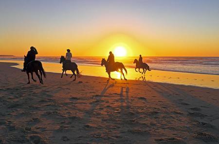 Beach Horseback Riding in Cartagena