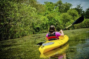 Kayaking on Broad River with Wine Tasting