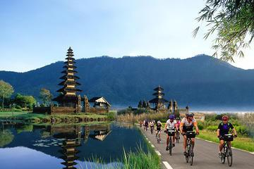 Full-Day Bali Sightseeing Tour with Bike Ride