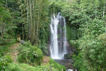 Private Tour: Munduk Waterfalls Trekking Tour