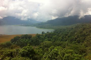 Private Rainforest Trekking Tour with Tamblingan Lake Canoeing