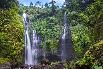 Private Sekumpul Waterfall Trekking Tour