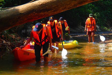 Rainforest Kayaking Trip