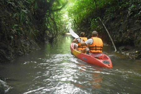 Rainforest kayaking adventure near Kuching