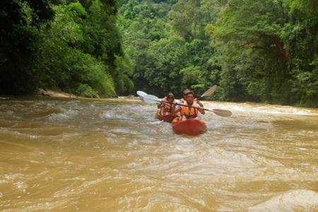 Kayaking & orangutans & longhouse adventure