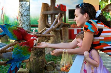 Singapore Jurong Bird Park Tour