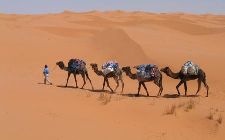 Merzouga Desert, Dades & Draa Valley 3-Day Private Tour