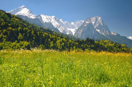 5-Day Trip from Frankfurt to Munich: Rothenburg, Augsburg, Zugspitze
