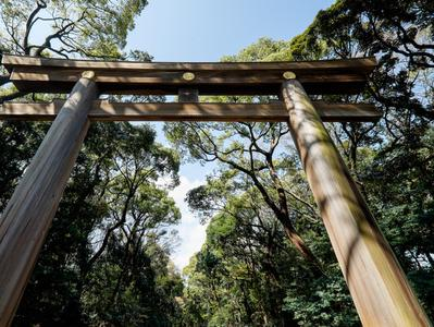 Tokyo Morning Tour with Meiji Shrine Imperial Palace and Sensoji Temple