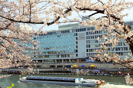 Osaka Afternoon Walking Tour with Osaka River Cruise