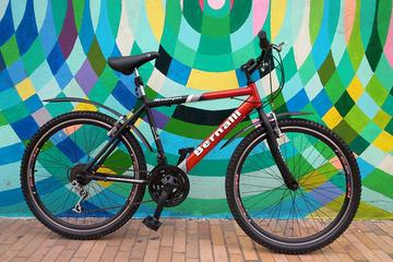 Bike Rental 4 or 8-Hour in Bogotá