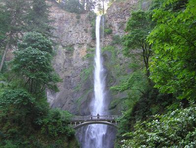 Multnomah Falls and Columbia River Gorge Half Day Tour