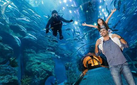 Dubai Aquarium & Underwater Zoo: 1-Day Ticket