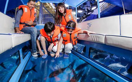 Dubai Aquarium & Underwater Zoo: Explorer Experience