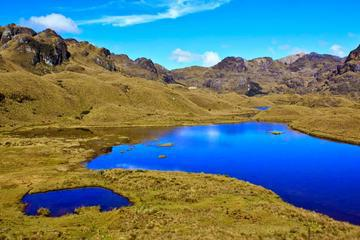 Cajas National Park and Cuenca City Tour