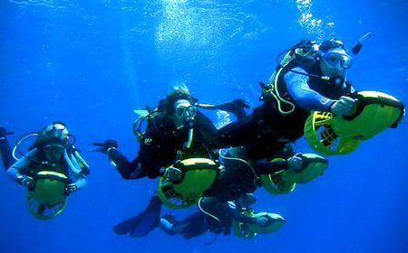 Tenerife Scuba Diving for Certified Divers