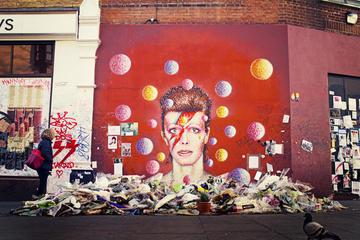 Private Tour: Brixton In One Day Walking Tour