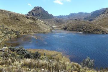 Cajas National Park Day Trip Including Lunch
