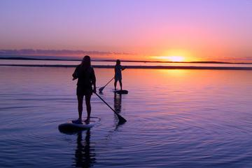 2 Hour Virginia Beach Paddleboard Rentals