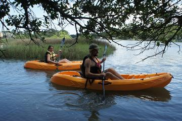 Virginia Beach 1 Hour Single Kayak Rentals