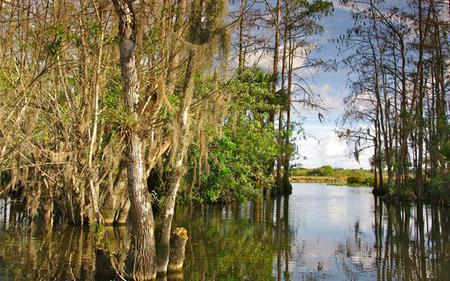 Sawgrass Recreation Park Ticket including Airboat Ride