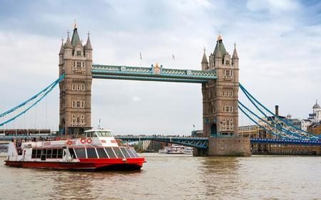 Saver Combo: Thames Hop-On, Hop-Off Cruise & London Eye Tickets