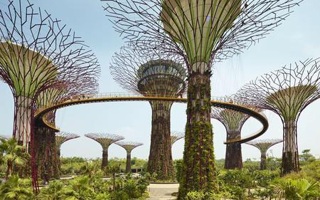 Singapore Night Bus Tour with Meal Voucher, Gardens by the Bay and Bugis Street