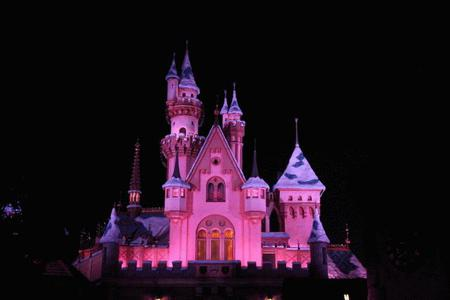 1-Day Disneyland/California Adventure Tour from Los Angeles - Transfer only