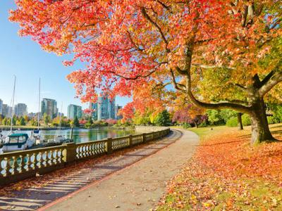 4-Day  Canadian Rockies, Vancouver, Banff, Tour from Calgary, Vancouver / Seattle out