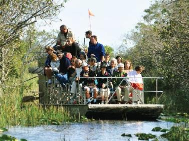 Everglades Safari Park w/ Airboat Ride Half Day Tour from Miami