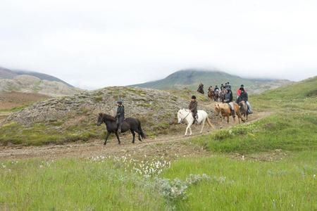 The Viking Horse Riding and The Blue Lagoon