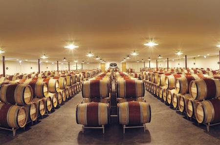 Grands Crus Classés de Graves Wine Tour and Lunch from Bordeaux