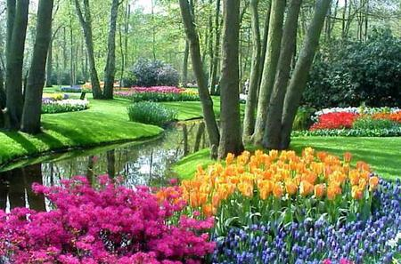 Amsterdam Super Saver 1: Keukenhof Gardens Day Trip and Amsterdam City Tour