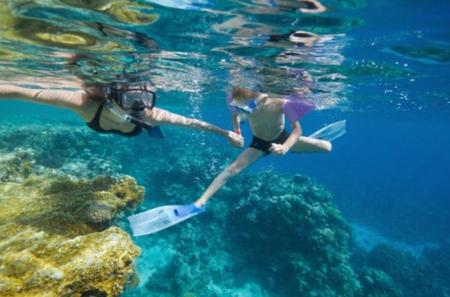 Bermuda Shore Excursion: Power Snorkel Adventure