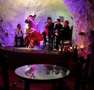 Flamenco Show w/ Dinner + Granada Hop-on Hop-off