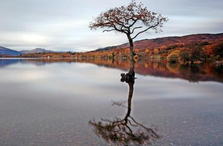 1-Day Loch Lomond & Stirling Castle Tour
