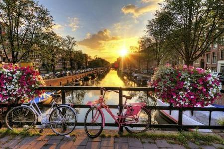Amsterdam City Tour w/ Keukenhof Flower Garden
